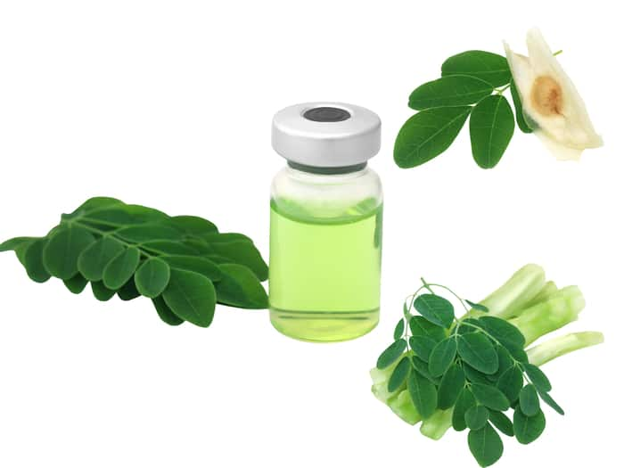 moringa oil and leaf